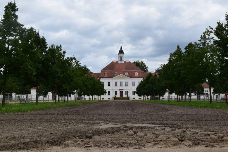 Bild vom Haupt- und Landgestüt in Neustadt Dosse im Havelland