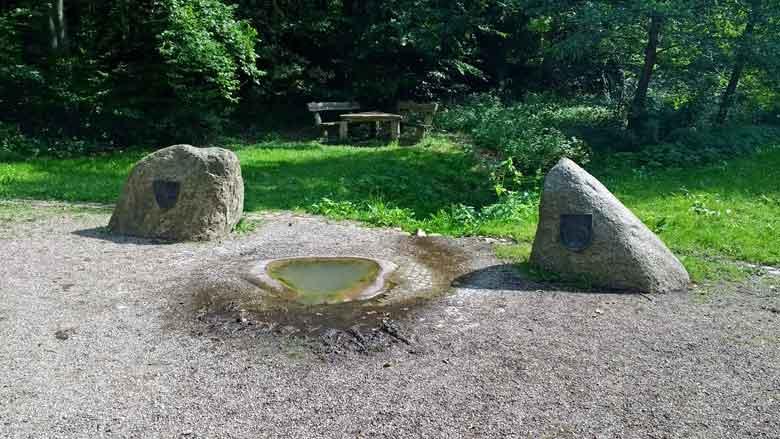 Bild von der rekonstruierten Havelquelle im Mueritz-Nationalpark