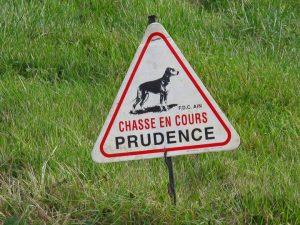 Bild eines Warnschildes mit Jagdhund bei einer Treibjagd in den Gorges de l'Ain