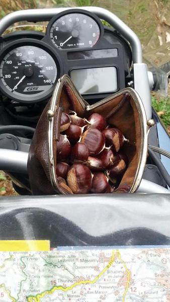 Bild der Ausbeute der Kastanienernte in einer kleinen Ledertasche auf dem Tank einer BMW R 1200 GS