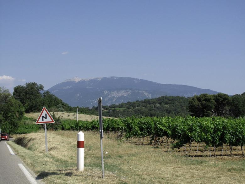 Bild mit Fernblick auf den Mont Ventoux von einer kleinen Landstrasse aus mit einem Weingarten im Vordergrund und suedlaendischen Eichenhainen im Mittelgrund