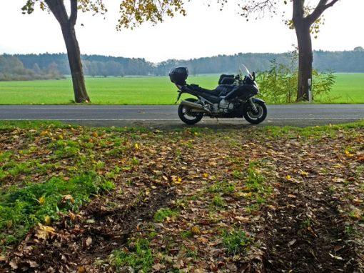 Bild von einer Lausitztour mit dem Motorrad mit einer Yamaha FJR 1300 in einer Allee