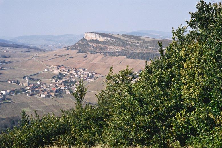 Bild vom Ausblick auf den Kalkfelsen von Solutré im Département Saône-et-Loire in der Region Bourgogne-Franche-Comté etwa zehn Kilometer westlich von Mâcon mit Weinbergen im Vordergrund