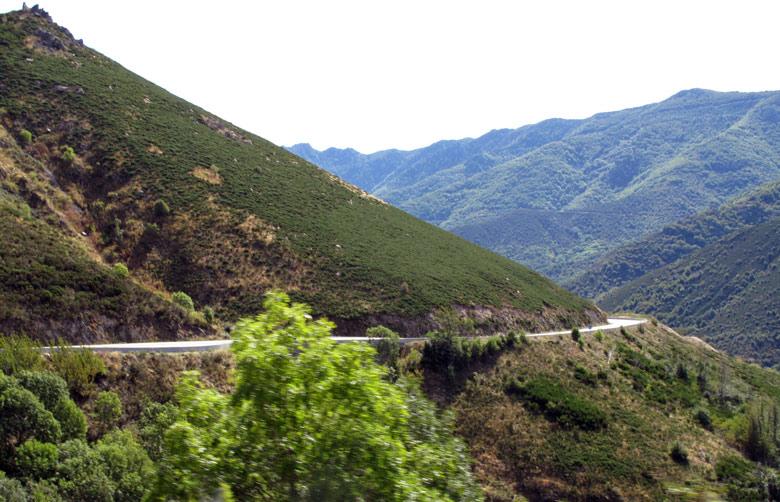 Bild einer einsame Strasse in der Ardèche mit einer Serpentine durch die Hügel mit Buschwerk