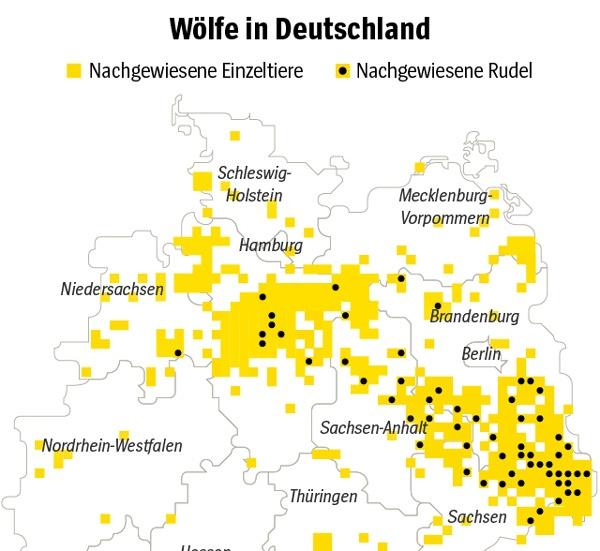 Kartographische Darstellung der Verbreitung der Wölfe in Deutschland im Jahre 2018