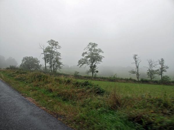 Neblige Landschaft in der Auvergne in Frankreich