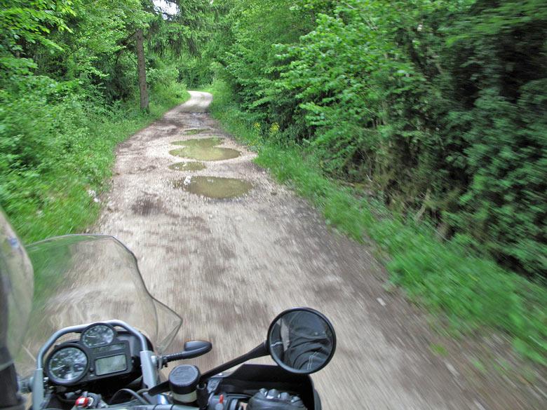 Warum fahre ich Motorrad? Unmittelbarkeit der Natur bei einer Fahrt durch den Wald in den Gorges de l'Ain mit einem Motorrad BMW R 1200 GS