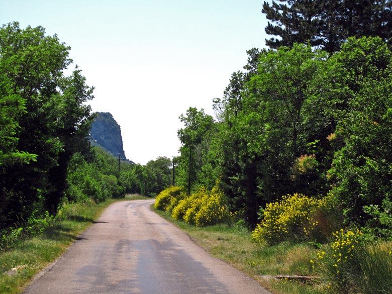 Landsträßchen bei Saou in Südfrankreich mit Ginsterblüte, aufgenommen bei einer Motorradtour zum Gipfel des Mont Ventoux