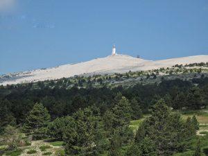 Mont-Ventoux-Bergstation von der Baumgrenze aus mit Krueppelkiefern in Vordergrund und hellen Geroellfeldern im Hintergrund auf den Gipfel zu