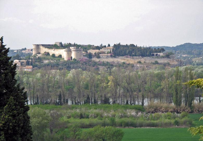 Blick auf Villeneuve von Avignon aus mit der imposenten Festung jenseits des Flusses