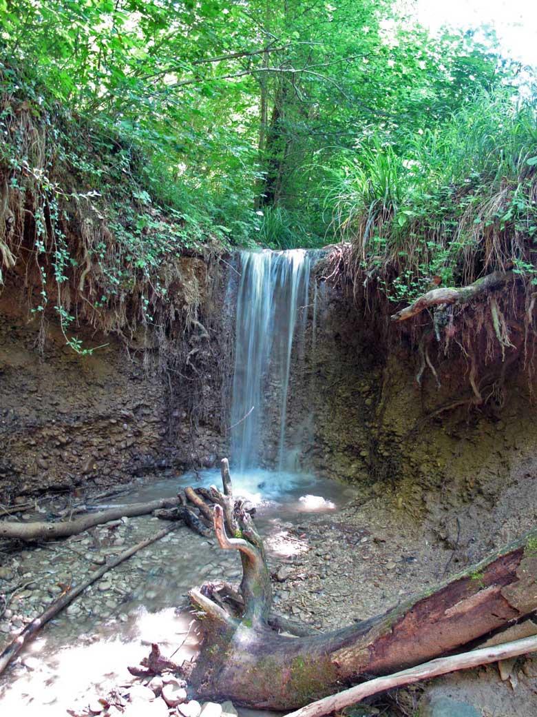 Magischer Wasserfall im Forêt de Vallin, besucht bei einer Motorradtour auf den Grand Colombier