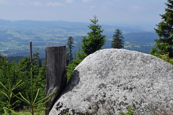 Blick vom Dreisesselberg über den Unteren Bayerischen Wald