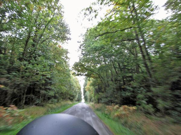 Waldstraße im Forêt de Paimpont in der Bretagne von einem Motorrad aus in voller Fahrt fotografiert