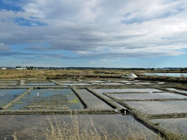 Salinen bei Batz an der französischen Atlantikküste