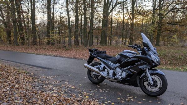 motorrad-seentour in brandenburg: motorrad im herbstwald