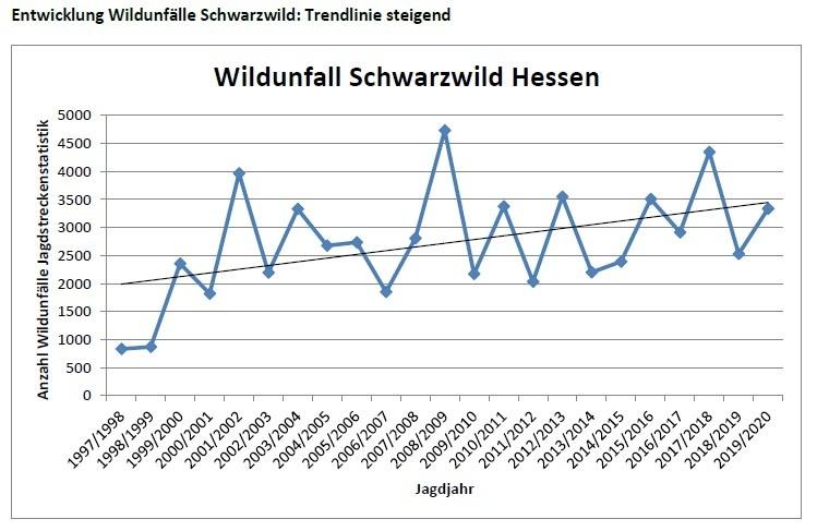 statistik des langjaehrig steigenden trends von wildunfaellen in hessen