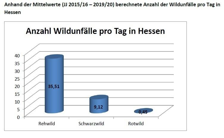 anzahl der wildunfaelle pro tag in hessen