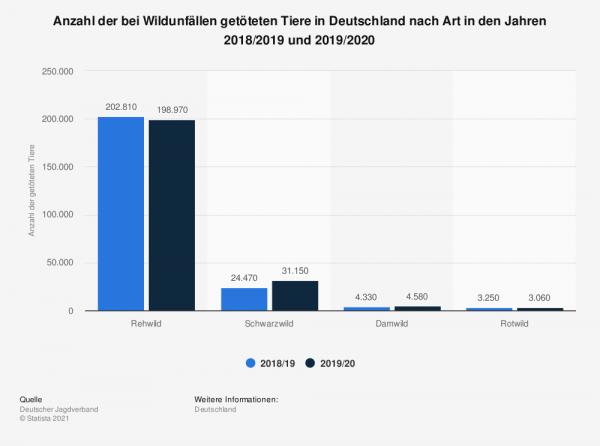 statistik wildunfaelle in deutschland 2019/2020