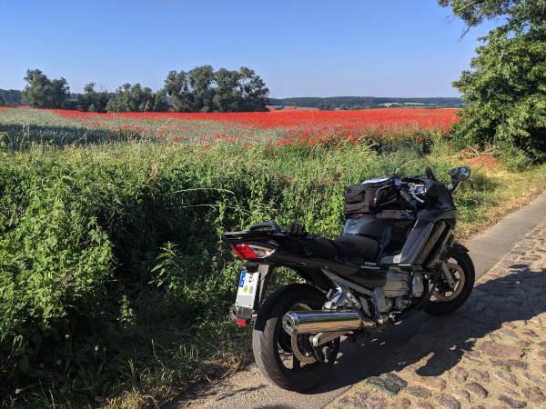 fruehstart in den sommertag: motorrad vor rotem mohnfeld in der uckermark