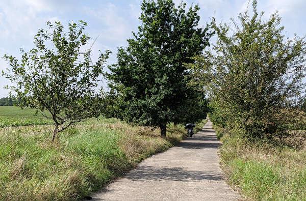 motorradsommer adieu: motorrad auf einem betonplattenweg mit obstbaeumen