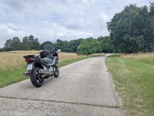 mueritz nationalpark betonplattenweg
